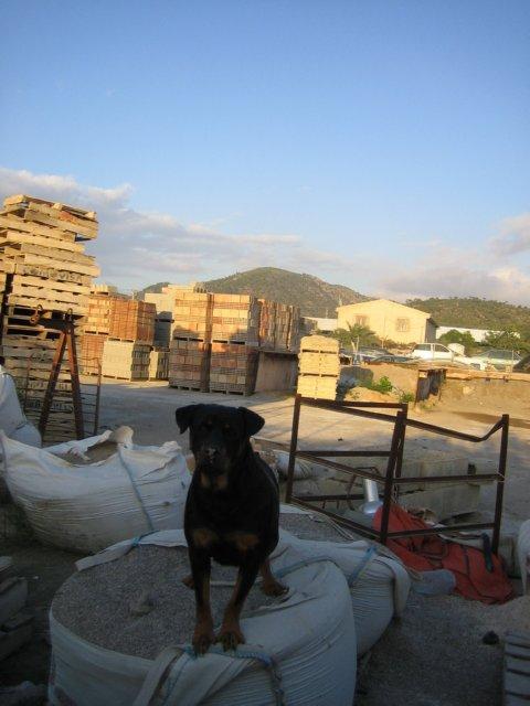ALMACEN MATERIALES CONSTRUCCION