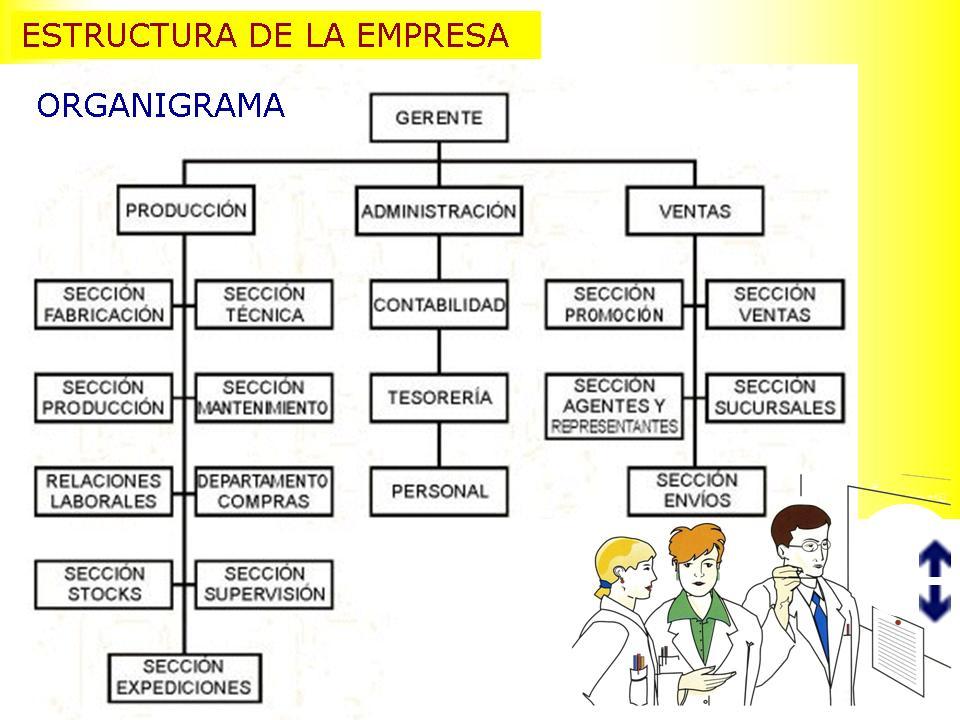 Ergonomia Organizacion