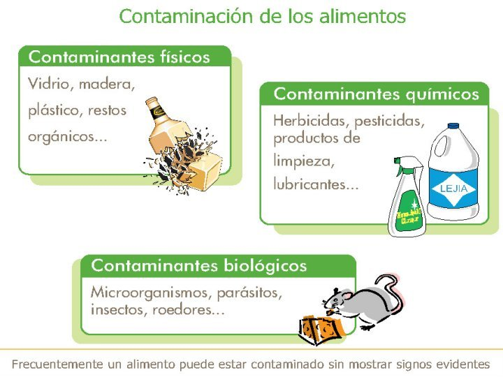 Manipulador alimentos - Fuentes de contaminacion de los alimentos ...