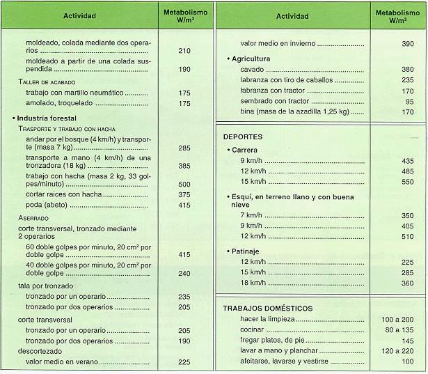 Una palabra: metabolismo de hidratos de carbono