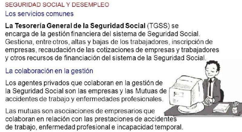 05 tesoreria seguridad social formacion y orientacion laboral for Tesoreria seguridad social vitoria