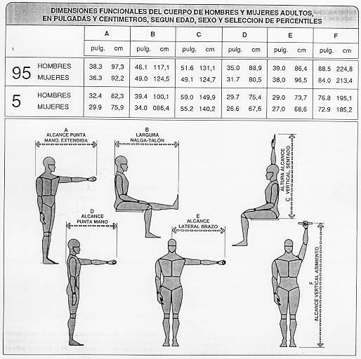Ntp 226 mandos ergonom a de dise o y accesibilidad for Cuales son medidas antropometricas