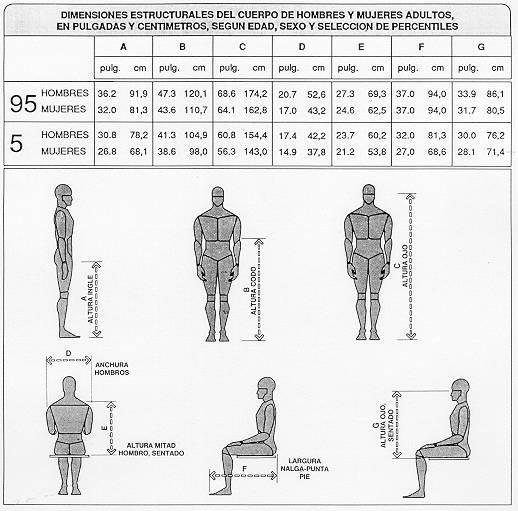 Ntp 226 mandos ergonom a de dise o y accesibilidad for Medidas antropometricas del cuerpo humano